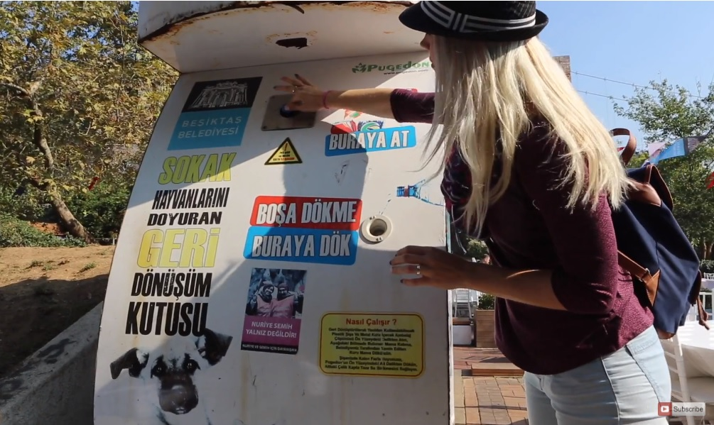 Free Dome kupule – Lombok